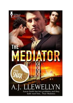 multitaskingmomma : eARC Review: The Mediator by A.J. LLewellyn