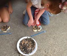 Making bird treats with bread, eggs, and bird feed.