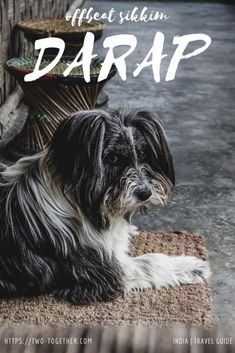 Your complete travel guide to Darap, an offbeat destination near Pelling in West Sikkim. Find out how to reach, things to do in Darap, and places to stay. India Travel Guide, Asia Travel, India Destinations, Travel Guides, Travel Tips, Plan Your Trip, Mumbai, Family Travel, Travel Inspiration