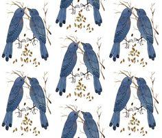 Bluebirds - Woodland Collection  gollybard
