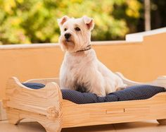 Built In Dog Bed, Pet Dogs, Dog Cat, Dog House Bed, Dog Furniture, Cool Dog Beds, Dog Houses, Dog Supplies, Pet Clothes