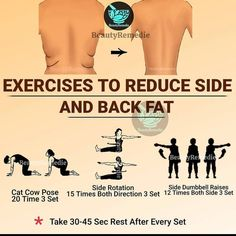 Exercises To Reduce Side And Back Fat Tag your friends who want to lose unwanted belly fat naturally and safely ⁠ Tips Fitness, Fitness Workout For Women, Fitness Diet, Health Fitness, Fitness Facts, Woman Workout, Fitness Women, Muscle Fitness, Biceps