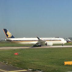 Acabo de ver el primer A350 en mi vida #airbus #A350 @singaporeair