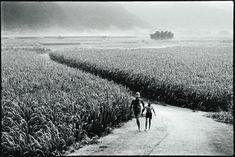 阮義忠 | 南投埔里, 1979
