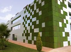 Modular Vertical Garden Panels Clean the Air. Amazing vertical garden panels allow you to create any pattern you want. So cool!Amazing vertical garden panels allow you to create any pattern you want. So cool! Green Architecture, Sustainable Architecture, Sustainable Design, Architecture Design, Sustainable Energy, Sustainable Living, Contemporary Architecture, Vertical Green Wall, Garden Tiles