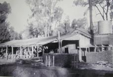 Deep in the heart of the Pilliga Forrest there is a former village of national… Scary Stuff, Sydney Australia, Interesting Facts, Roads, 1930s, Management, Deep, Times, History