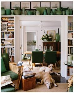 Bookshelves,dogs and shelves over the door.