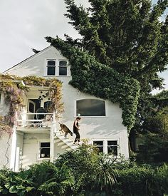 The pale purple wisteria (in full bloom) provides a stunning contrast to the white exterior of this charming white cottage situated on a cliff in Vancouver.