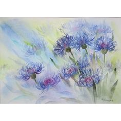 Cornflowers by Rachel McNaughton - Watercolour Painting - Mini Gallery Acrylic Flowers, Watercolor Flowers, Watercolor Art, Watercolour Paintings, Rachel Parker, Gouache Tutorial, Spring Blooms, Cat Design, Tapestry