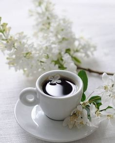 Tea Cafe, Coffee Cafe, Coffee Drinks, Drinking Coffee, Background Images For Quotes, Good Morning Coffee Gif, Tea Puns, Bon Mardi, Coffee Flower