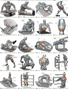 Shoulder Workout Routine To Add Serious Size To Your Shoulders. How To Get The Most Out Of This Shoulder Workout. Fitness Workouts, Gym Workout Tips, Abs Workout Routines, Weight Training Workouts, Biceps Workout, Yoga Fitness, Biceps Training, Forearm Workout, Fitness Motivation