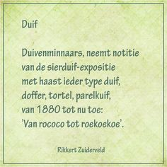 Duif - (dierengedichten van Rikkert Zuiderveld) -