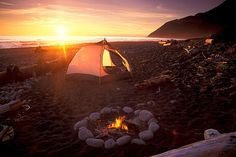 Due north of San Francisco and some miles south of the Oregon border, is an 80 mile stretch of undeveloped California land known by the romantic name, The Lost Coast.