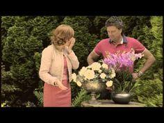 Marijke Helwegen gaat voor de Orchidee!