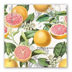 Pink Grapefruit Luncheon Napkins