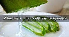 Roșii la borcan cu usturoi, pentru iarnă – LaTAIFAS Ketchup, Aloe Vera, Celery, Cancer, Vegetables, Food, Veggie Food, Vegetable Recipes, Meals