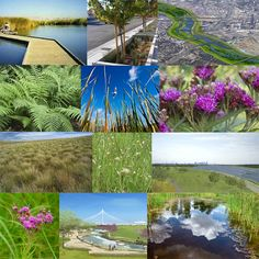The Trinity River Corridor: Natural & Planned Amenities