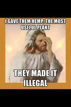 See what you've done? Now Jesus is really troubled...  - http://holesinthefoam.us/jesus-hemp/