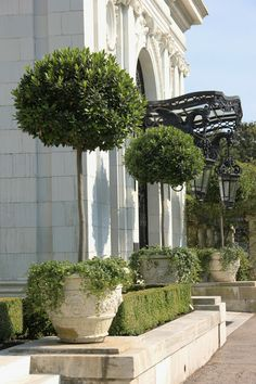 Henhurst Interiors: Architects of the Gilded Age