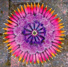 Mandalas de Flores - Kathy Klein • Jardim de Siguta •