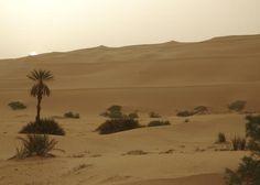 Sahara Desert, Africa