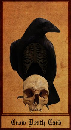 Crows Ravens:  #Crow Death Card, Ray Wells.