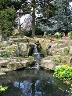 Sheffield Botanical Gardens, Sheffield #socialsheffield #sheffield #gardens #park