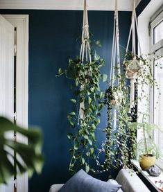 Fringe macrame plant hanger. Perfect for hanging plants while adding a decorative boho touch to your space! Glass not included. 37 inches long
