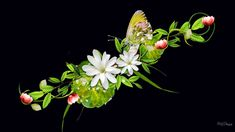 2020 Other | Images: 3d Hd Wallpapers Flowers