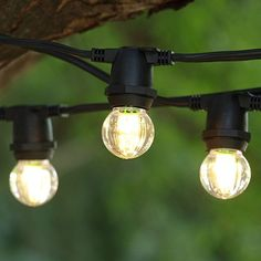 Globe string lights 15 in bulbs 50 ft black wire outdoor led commercial string light 25 ft black c9 led g30 wa aloadofball Image collections