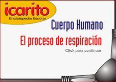DeportEscolar21 : Aparato respiratorio interactivo II