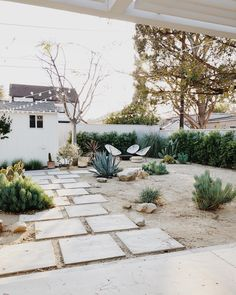 backyard design – Gardening Tips Desert Backyard, Backyard Patio, Front Yard Garden Design, Front Yard Landscaping, Outdoor Gardens, Plants, Porch, Backyards, Outdoors