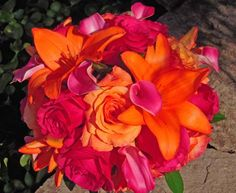 Google Image Result for http://www.afloralaffair.com/wedding/bouquets/peach_orange/images/BB0287-Hot%2520Pink%2520and%2520Orange%2520Lily%2520and%2520Rose%2520Wedding%2520Bouquet.jpg