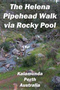 Rocky Pool is in full flow after some good winter rains. Better go check it out and then make my way to a more reliable water source, the Pipehead Dam on the Helena River. Croatia Travel, Thailand Travel, Bangkok Thailand, Italy Travel, Perth Australia, Western Australia, Camping Glamping, Camping Ideas, Hiking With Kids