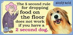 You have to be faster than the dog! | Read Aunty Acid #comics @ www.gocomics.com/aunty-acid/2015/07/30?utm_source=pinterest&utm_medium=socialmarketing&utm_campaign=social | #GoComics #webcomic #dogs