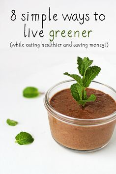 8 Simple Ways to Live Greener (while eating healthier and saving money!!)