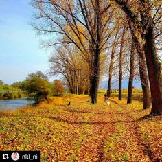Walk by the river routine in Niš. More about day life in city of Niš on https://www.wheretoserbia.com #wheretoserbia #Serbia #Travel #Holidays #Trip #Wanderlust #Traveling #Travelling #Traveler #Travels #Travelphotography #Tbt #Travelpic #Travelblogger #Traveller #Traveltheworld #Travelblog #Travelbug #Travelpics #Travelphoto #Traveldiaries #Traveladdict #Travelstoke #TravelLife #Travelgram #Travelingram #Likesforlikes #Instatravel #Instatraveling #TopLikeTags