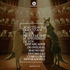 15. Acautelai-vos quanto aos falsos profetas. Eles se aproximam de vós disfarçados de ovelhas, mas no seu íntimo são como lobos devoradores. (Mateus, 7)