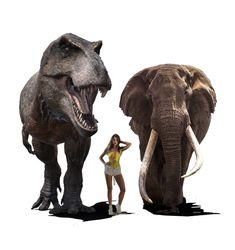 티라노사우루스 vs 아프리카코끼리 : 네이버 블로그