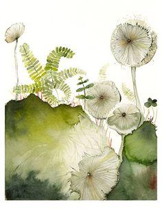 Adiante et champignons imprimer d'aquarelle par amberalexander