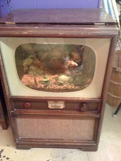 An old tv fish tank. A good example of extending the top a bit to make room for the filter and top. - @Angie Jantz