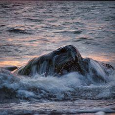 Passing Grace Image Types, The Locals, Waves, Outdoors, Sea, Sunset, Landscape, Scenery, The Ocean