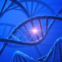 New DNA research reveals undiscovered white dots on the map Researchers at the University of Copenhagen have located a previously unknown function in the so-called histones, which allows for an improved understanding of how cells protect and repair DNA damages. This knowledge may eventually result in better treatments for diseases such as cancer.