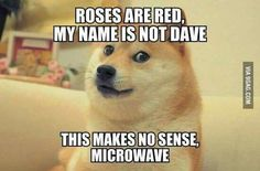 Roses are Red, My name is not Dave. This makes no sense, Microwave.