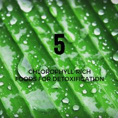 5 CHLOROPHYLL-RICH FOODS FOR DETOXIFICATION