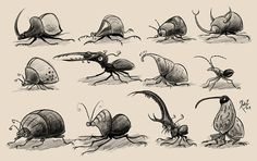 Insects by Roger Hoyos, via Behance