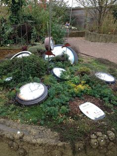 Alice in Wonderland garden inspiration at Butterfly World, St Albans