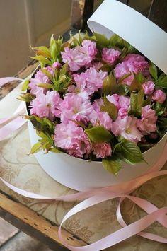 Flowers and Garden Kitchen