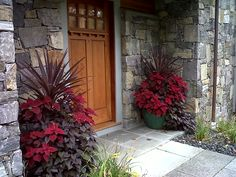 The same containers are used year round to add interest to the homes of our clients.  This combination of plants used annuals  and subtropical plants to bring life to the front entrance.