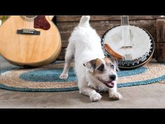 ( Fast & Furious 7 ) - Wiz Khalifa & Iggy Azalea – Go Hard or Go Home - YouTube